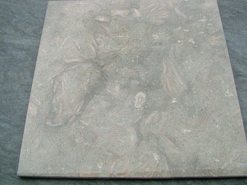 Fossil green limestone rough finish.